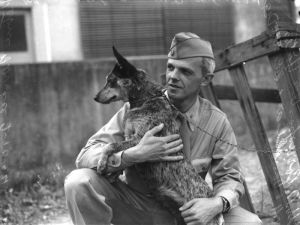 800px-US_Soldier_with_cattle_dog